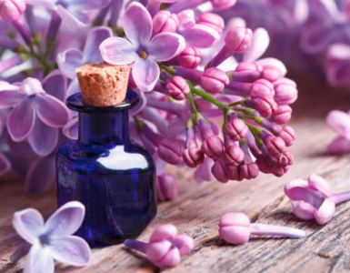 Оригинални парфюми за начинаещи - вода, парфюм, масло